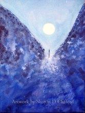 Moon Watching (VEILS web)